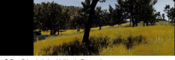 Vidéo Vallée